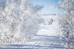 Eine schöne weiße Landschaft eines Tages des verschneiten Winters mit Bahnen für Schneemobil fahrung oder Hundeschlitten Stockbilder