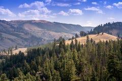 Eine schöne Yellowstone-Landschaft in Wyoming USA Lizenzfreie Stockbilder