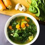 Eine Schüssel Frischgemüse-Suppe mit Bestandteilen Lizenzfreie Stockfotos