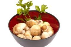 Eine Schüssel mit Pilzen, Knoblauch und Petersilie Lizenzfreie Stockfotografie
