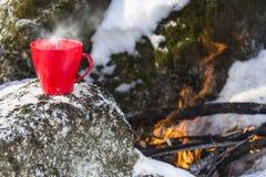 Eine Schale des heißen Getränks während des Winters, der im Wald wandert lizenzfreies stockbild
