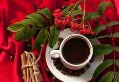 Eine Schale des heißen starken Kaffees, der Zimtstangen, der Kaffeebohnen und des Bündels Aschbeeren auf einem Rot drapierte Gewe Lizenzfreies Stockfoto
