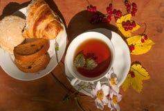 Eine Schale des Kräutertees, der Platte des frischen Gebäcks, des gelben Herbstlaubs, der reifen roten Johannisbeeren und des Gar Stockfotos