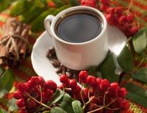 Eine Schale heißer starker Kaffee, Zimtstangen, reife Aschbeeren und Kaffeebohnen auf einer gestrickten Oberfläche Lizenzfreie Stockfotografie