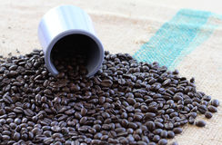 Eine Schale mit Röstkaffeebohnen Lizenzfreie Stockbilder