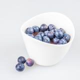 Eine Schale Pudding mit Blaubeeren Lizenzfreies Stockfoto