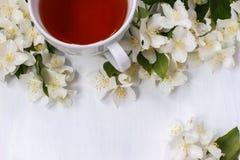 Eine Schale schwarzer Tee mit wohlriechendem Jasmin blüht auf weißem Hintergrund Lizenzfreies Stockfoto