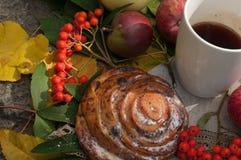 Eine Schale starker schwarzer Tee, süßes Brötchen mit Rosinen, Aschbeeren, Äpfel und bunter Herbstlaub auf einer Steinoberfläche Stockfotos