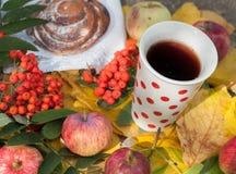 Eine Schale starker schwarzer Tee, süßes Brötchen mit Rosinen, Aschbeeren, Äpfel und bunter Herbstlaub auf einer Steinoberfläche Stockbild