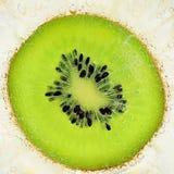 Eine Scheibe der Kiwi Stockfoto