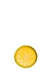 Eine Scheibe der Tangerine Lizenzfreies Stockbild