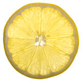 Eine Scheibe der Zitrone Stockbilder