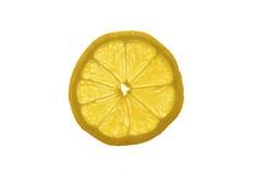 Eine Scheibe der Zitrone Lizenzfreie Stockbilder