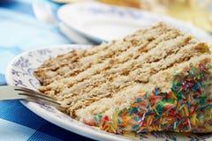 Eine Scheibe des Kuchens Stockfotografie