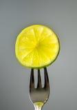 Eine Scheibe des Zitronenkalkes Lizenzfreies Stockfoto