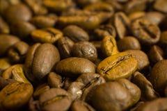 Eine Schicht Kaffeebohnen Hintergrund stockbild