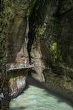 Eine schießende erstaunliche Landschaft des Reisenden von Gebirgsfluss Stockfotos