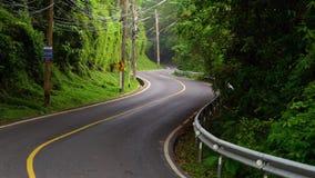 Eine schmale Straße unter dem Dschungel stock video footage