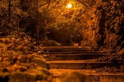 Eine schreckliche Straße mit Treppe in den Nachtparkpflastersteinen gepflastert mit Steinbalustrade in den Bäumen mit Lichtstraße Stockfotografie