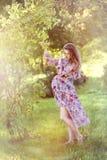 Eine schwangere Frau im Garten Stockbilder