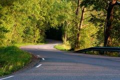 Eine schwedische Landstraße Lizenzfreie Stockfotos