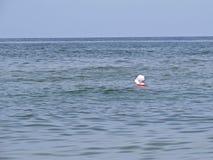 Eine Schwimmen der allein stehenden Frau Damen-Alone Silhouette Head in den Meereswellen mit weißem Hut lizenzfreie stockbilder