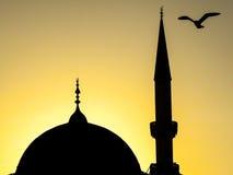 Eine Seemöwe über der Haube und dem minarette einer Moschee bei Sonnenuntergang Lizenzfreies Stockfoto