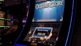 Eine Seite von den Leuten, die Spielautomaten spielen stock video footage