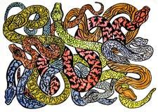 Eine Skizze vieler verschiedenen bunten Schlangen zeichnen gefährlich und stockbild