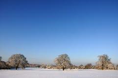 Eine snowy-Landschaft stockbilder