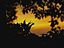 Eine Sonnenuntergangansicht Stockbilder