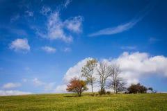 Eine sonnige Ansicht des Herbstes stockfotografie