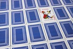 Eine Spassvogel unter den umgeworfenen Spielkarten, die aufwärts gegenüberstellen stockfoto