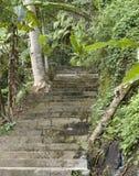 Eine Spur der jahrhundertalten Treppe Lizenzfreie Stockfotografie