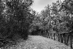 Eine Spur im Schloss von Vernazzano, Tuoro Stockfotos