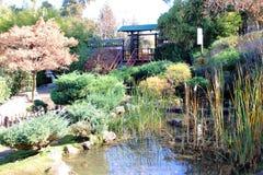 Eine Steinlaterne und der Garten mit Ahorn Lizenzfreie Stockbilder