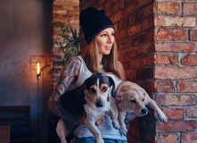 Eine stilvolle tattoed blonde Frau im T-Shirt und in den Jeans hält zwei nette Hunde Stockfotografie
