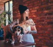 Eine stilvolle tattoed blonde Frau im T-Shirt und in den Jeans umfasst zwei nette Hunde Stockfoto