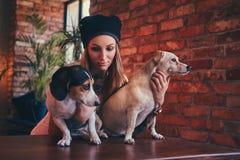 Eine stilvolle tattoed blonde Frau im T-Shirt und in den Jeans umfasst zwei nette Hunde Lizenzfreie Stockfotos