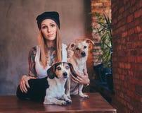 Eine stilvolle tattoed blonde Frau im T-Shirt und in den Jeans umfasst zwei nette Hunde Lizenzfreies Stockfoto