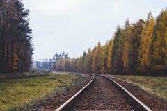 Eine Straße im Herbst Stockfotografie