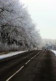 Eine Straße im Winter Stockfotografie