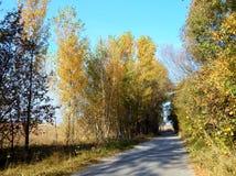 Eine Straße ist in der ländlichen Stelle lizenzfreie stockbilder