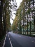 Eine Stra?e zu Qincheng-Berg in Chengdu lizenzfreie stockfotos