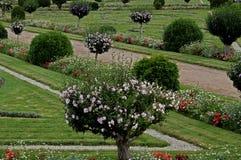 Eine Studie eines formalen Gartens mit Anlagen und Blumen Stockbilder