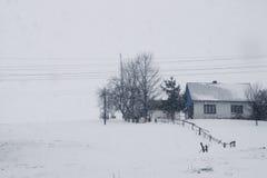 Eine Szene des verschneiten Winters mit fallendem Schnee von der Karpatenregion, Ukraine, Europa Stockbilder