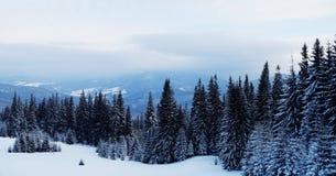 Eine Szene des verschneiten Winters mit fallendem Schnee von der Karpatenregion, Ukraine, Europa Lizenzfreie Stockfotos