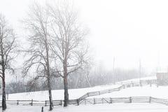 Eine Szene des verschneiten Winters mit fallendem Schnee von der Karpatenregion, Ukraine, Europa Stockfoto