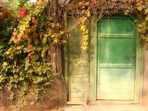 Eine Tür Lizenzfreies Stockbild