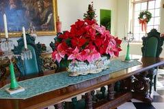 Eine Tabelle stellte in ein mansin ein und christmsas blühen Stockfotos